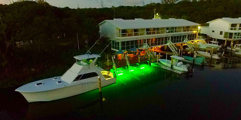 How Fishing Lights and Dock Lights Attract Fish
