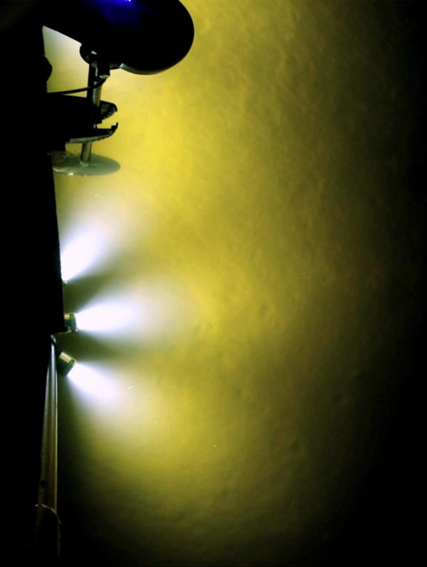 AlumiGlo FlounderPro 8550 Flounder Gigging Light 1
