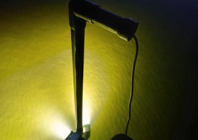 AlumiGlo FlounderPro 8550 Flounder Gigging Light 2