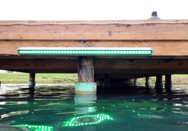 Alumiglo Dock Pro 3500 LED Dock Light 1