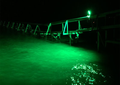 alumiglo dockpro 16000 green 6 h2