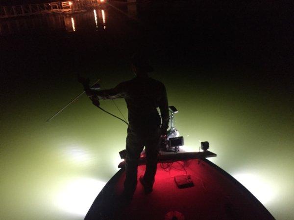 alumiglo flounderpro 2850 6 h2