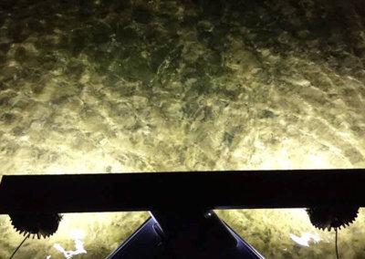 alumiglo flounderpro 5000 1 h2