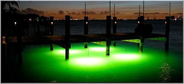 alumiglo magnum dock light