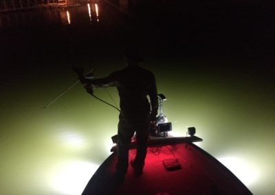 gallery bowfishing lights 6