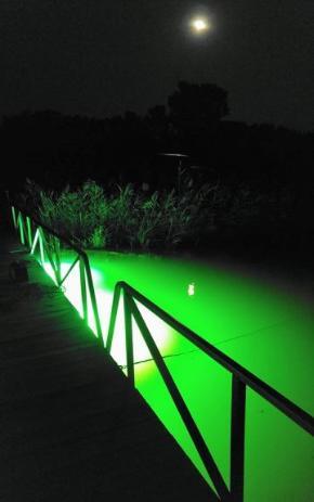 gallery fishing lights 4